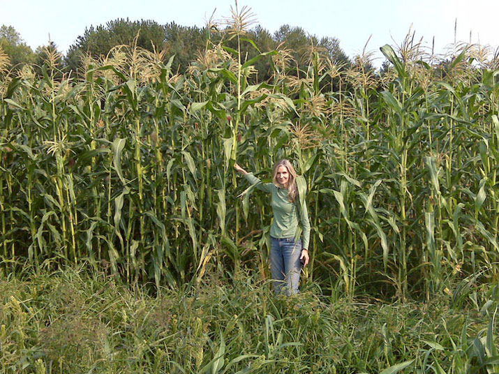 Kelly in cornfield